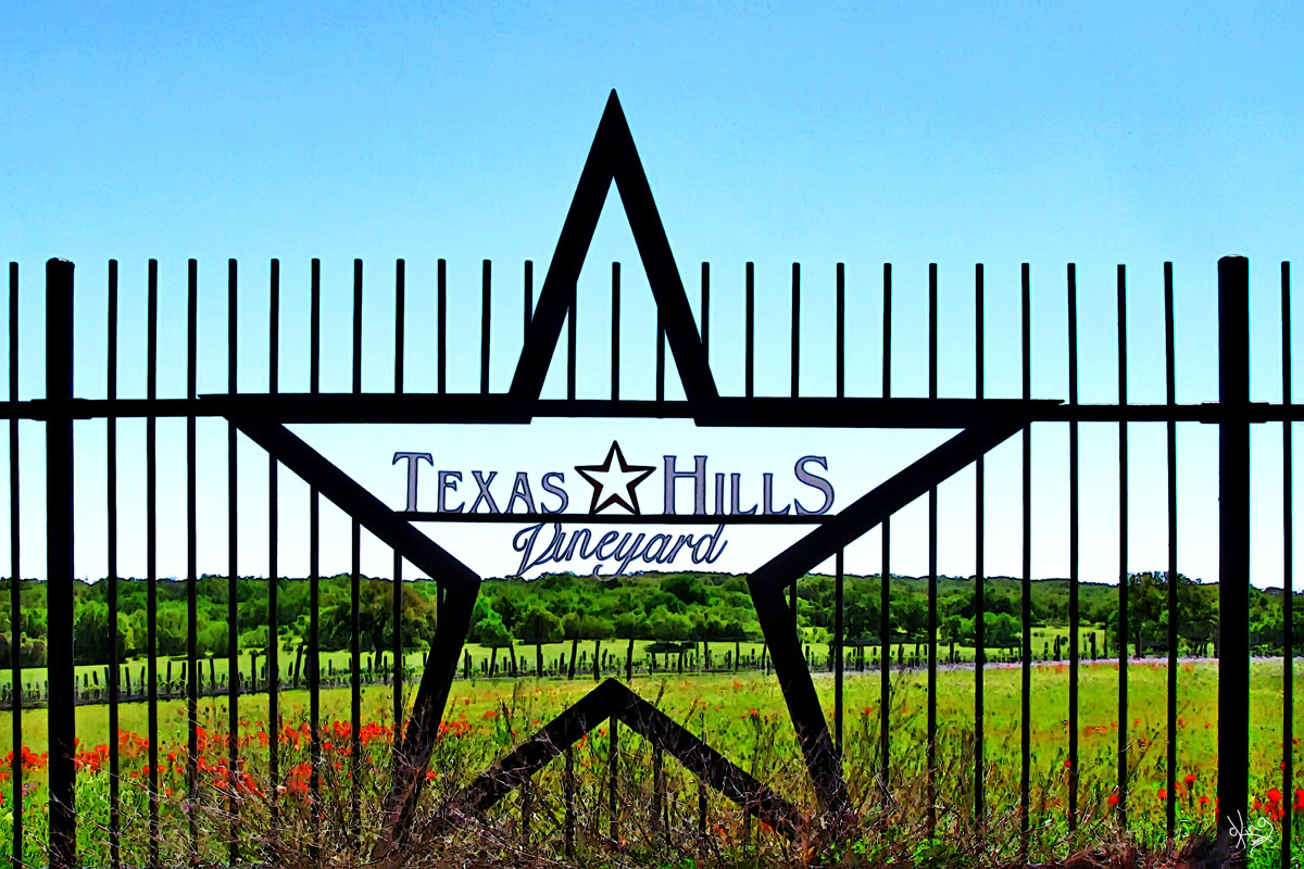 Texas Hills Vineyard gate