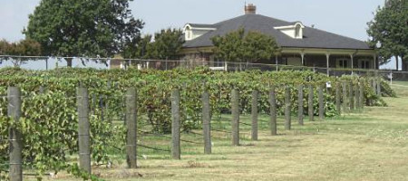 Premier Wine Blends and Grayson College Viticulture & Enology Program Team Up to Offer Internship