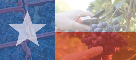Supporting the Farmers: Texas Wine Pledge Is Gaining Support