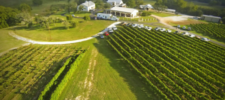 Arch Aerial Drones Give Texas Vineyard Owners New Perspective