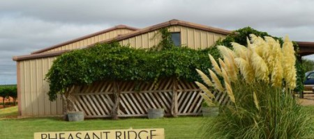 The Binghams Acquire Pheasant Ridge Winery and Vineyard