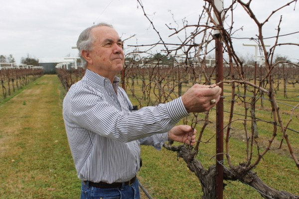 Haak Vineyards and Winery Prepares for the Next Step