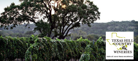 Texas Hill Country Wineries Elect Board Members for 2014