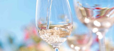 Summer Kick-off Tasting With the Texas Hill Country Wineries