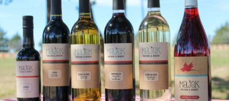 Book Signing Party for Austin Writer at Majek Vineyard and Winery Sept 20