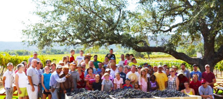 Perissos Vineyards Substantiates Texas Hill Country AVA Grape growing and Winemaking on a National Level