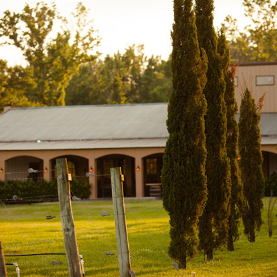 East Texas Winery Wins Double Gold at Largest Competition of American Wines in the World