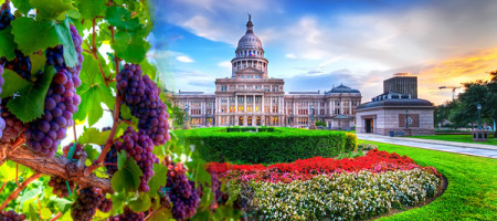 Texas Department of Agriculture Appoints Texas Wine Industry Development Advisory Committee