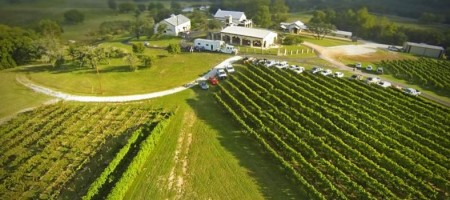 Texas Vineyard Owners Discovering New Uses For Aerial Drones