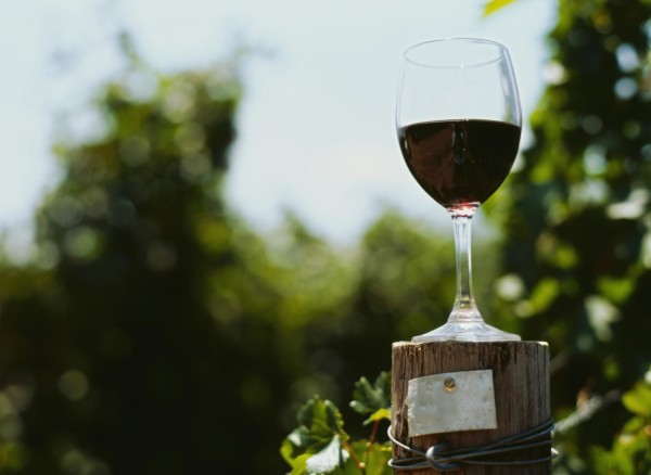 Texas Department of Agriculture Seeking Applicants To Assist With Wine Development Advisory Committee