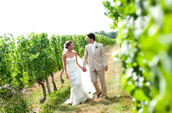 bride groom vineyard